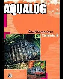AQUALOG Southamerican Cichlids III
